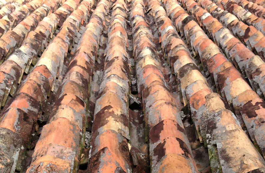 Ceramic tiled roof in Malacca photo taken by Alexander Lamont